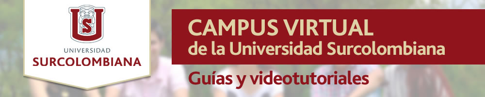 Campus Virtual de la Universidad Surcolombiana, Plataforma Educativa Virtual Sakai